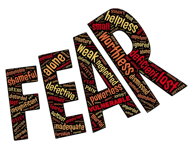 the word fear